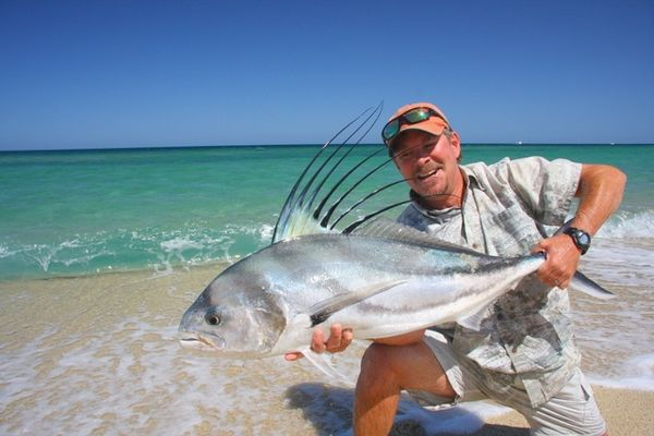 Baja roosterfish on the fly it doesn 39 t get much better for Rooster fish pictures