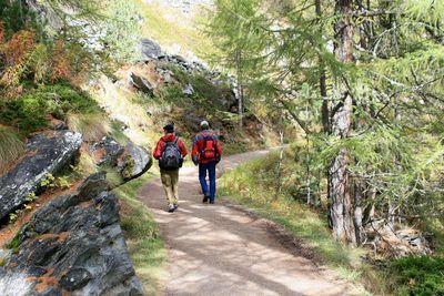 Hiking_5531_wilson1