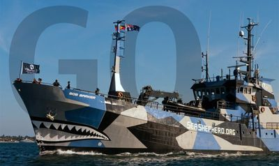 Seashepherd_bob barker