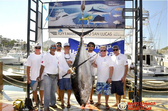 Big tuna 1