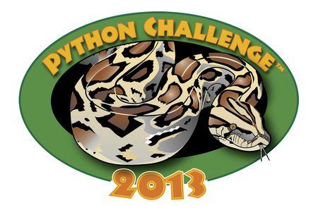 Python_challenge_logo