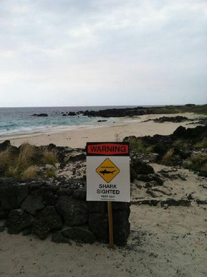 Sign posted at Kua Bay 6-18-13