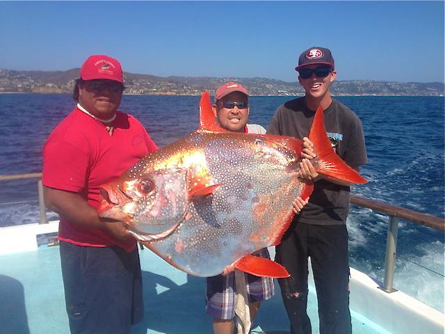 Rare opah catch made aboard newport beach half day boat for Deep sea fishing half moon bay