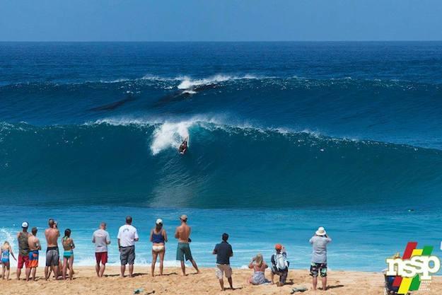 Surfingwhales