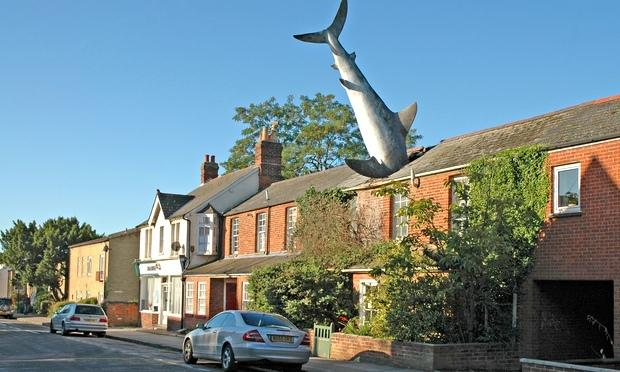 Oxford-shark-house-012