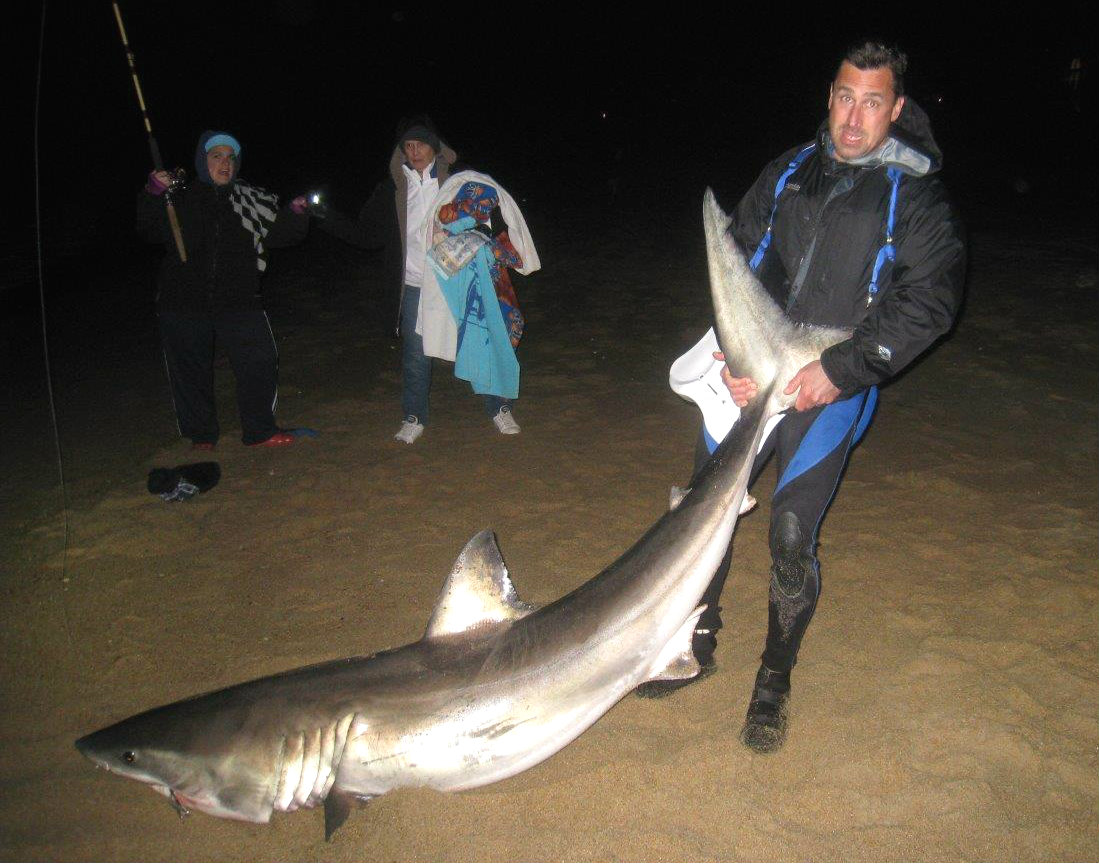 Great White Shark Caught From Outer Banks Beach Sad To See Pete Thomas Outdoors