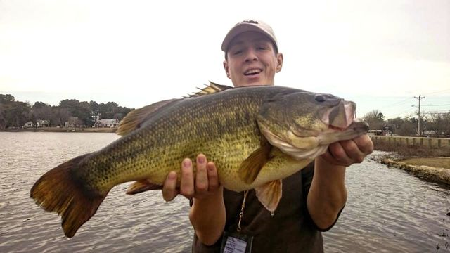 AJKlein-2016-delaware-state-record-largemouth-bass